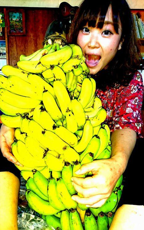 こぐまと島バナナ