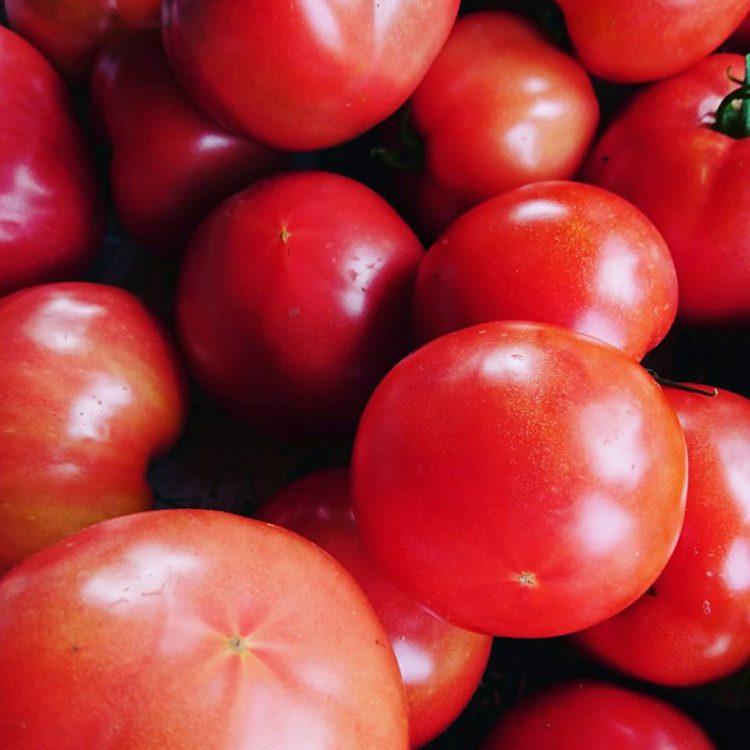今帰仁トマト