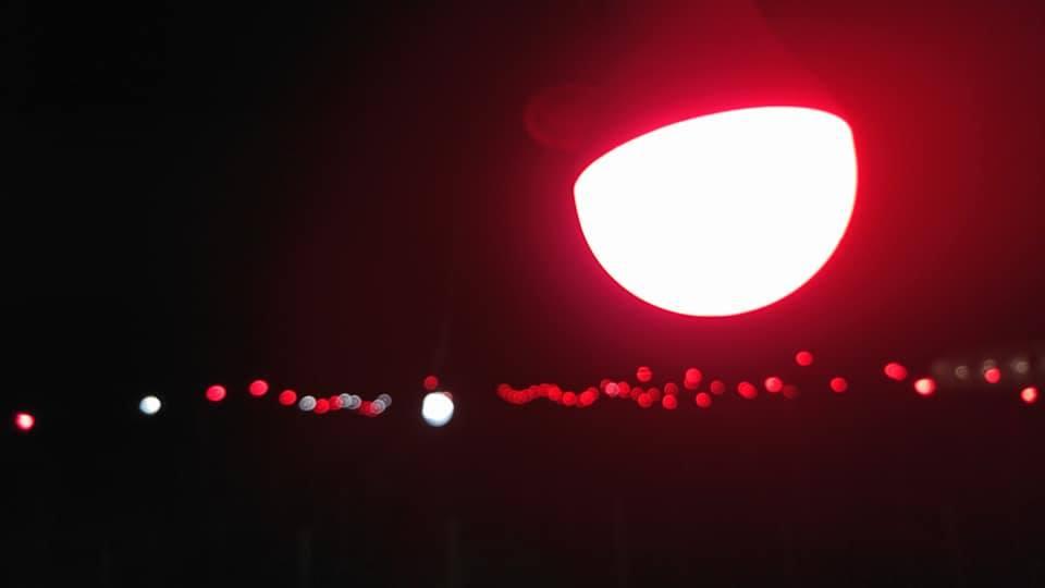 【見てみて、赤い電照菊だよ!】